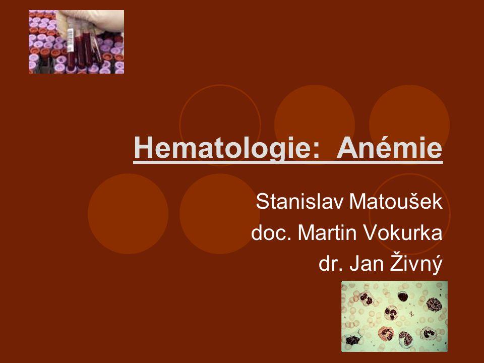 Hematologie: Anémie Stanislav Matoušek doc. Martin Vokurka dr. Jan Živný