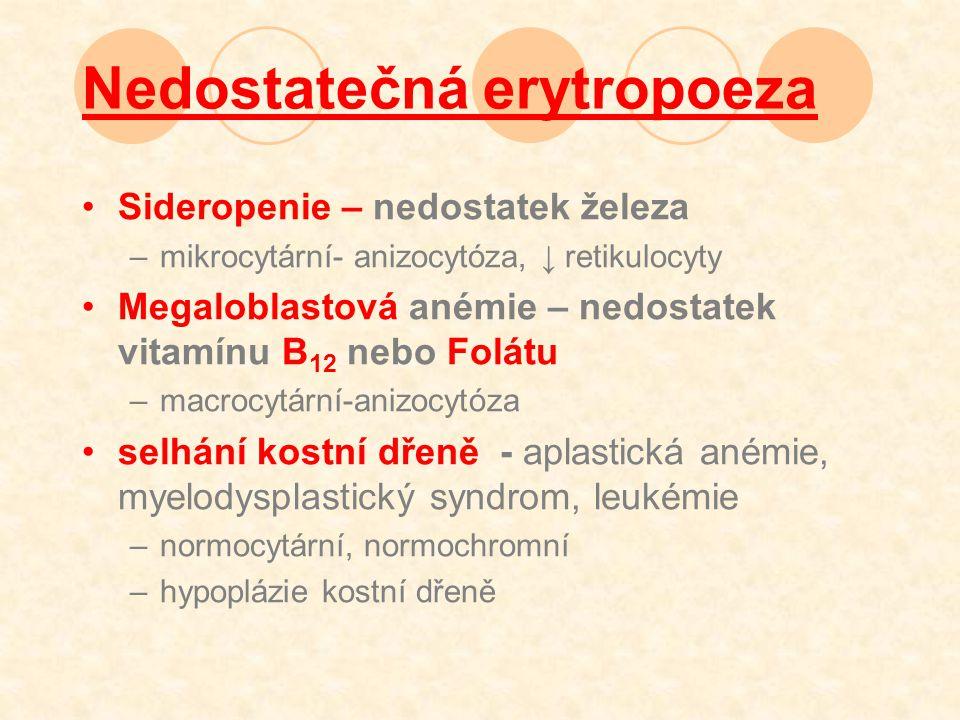 Nedostatečná erytropoeza Sideropenie – nedostatek železa –mikrocytární- anizocytóza, ↓ retikulocyty Megaloblastová anémie – nedostatek vitamínu B 12 nebo Folátu –macrocytární-anizocytóza selhání kostní dřeně - aplastická anémie, myelodysplastický syndrom, leukémie –normocytární, normochromní –hypoplázie kostní dřeně