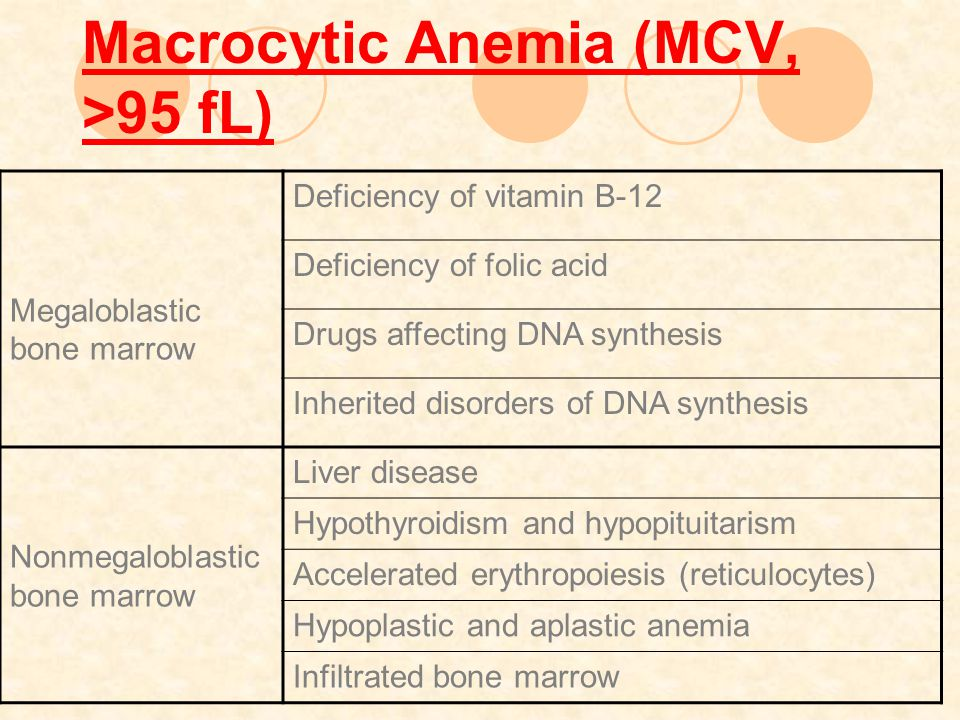 Macrocytic Anemia (MCV, >95 fL) Megaloblastic bone marrow Deficiency of vitamin B-12 Deficiency of folic acid Drugs affecting DNA synthesis Inherited