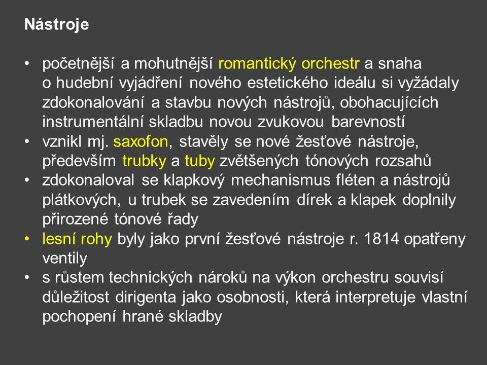 Nástroje početnější a mohutnější romantický orchestr a snaha o hudební vyjádření nového estetického ideálu si vyžádaly zdokonalování a stavbu nových n