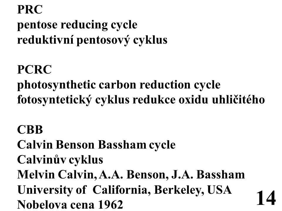 PRC pentose reducing cycle reduktivní pentosový cyklus PCRC photosynthetic carbon reduction cycle fotosyntetický cyklus redukce oxidu uhličitého CBB Calvin Benson Bassham cycle Calvinův cyklus Melvin Calvin, A.A.