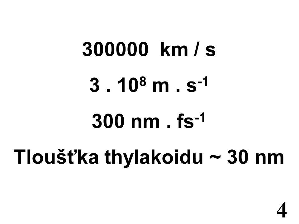 300000 km / s 3. 10 8 m. s -1 300 nm. fs -1 Tloušťka thylakoidu ~ 30 nm 4