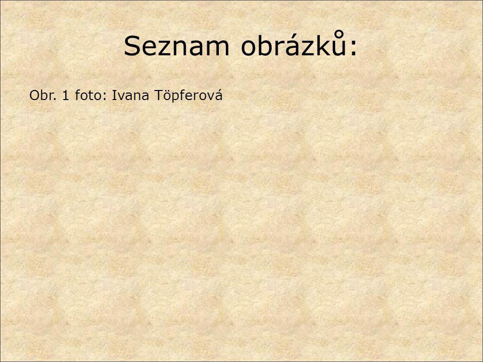Seznam obrázků: Obr. 1 foto: Ivana Töpferová