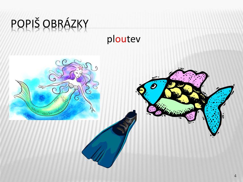 ploutev 4