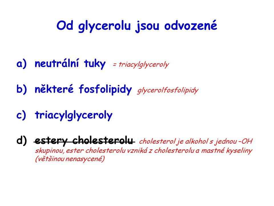 Od glycerolu jsou odvozené a)neutrální tuky = triacylglyceroly b)některé fosfolipidy glycerolfosfolipidy c)triacylglyceroly d)estery cholesterolu cholesterol je alkohol s jednou –OH skupinou, ester cholesterolu vzniká z cholesterolu a mastné kyseliny (většinou nenasycené)