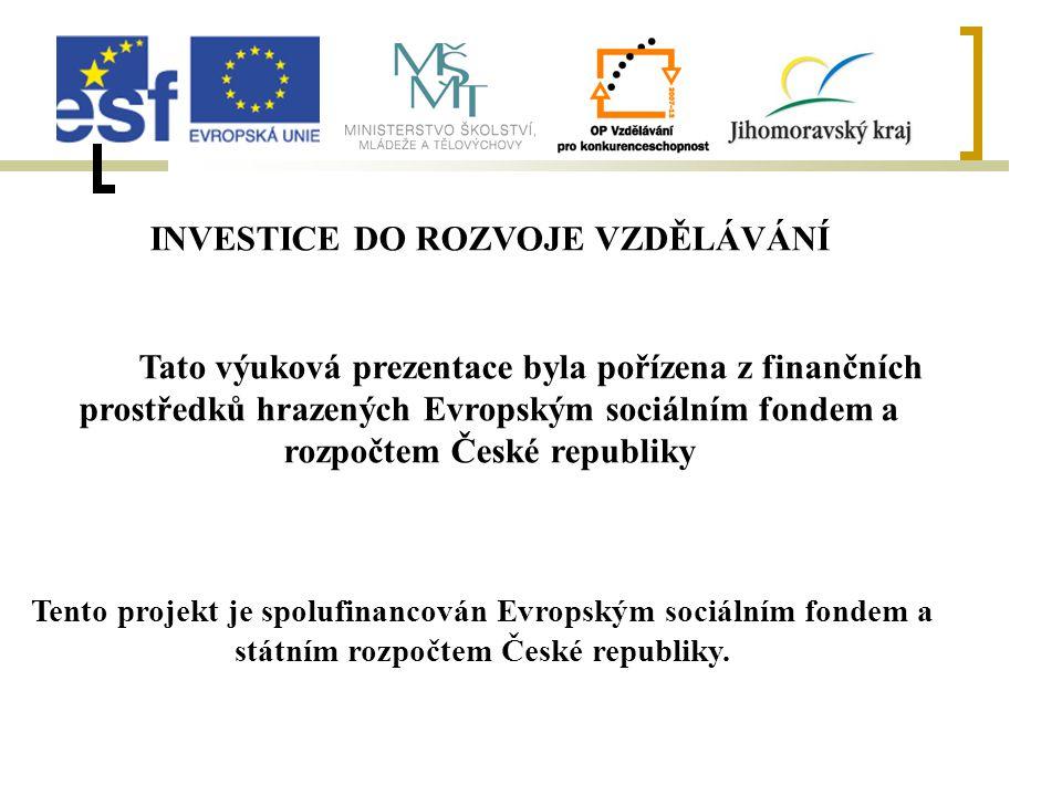 INVESTICE DO ROZVOJE VZDĚLÁVÁNÍ Tato výuková prezentace byla pořízena z finančních prostředků hrazených Evropským sociálním fondem a rozpočtem České republiky Tento projekt je spolufinancován Evropským sociálním fondem a státním rozpočtem České republiky.