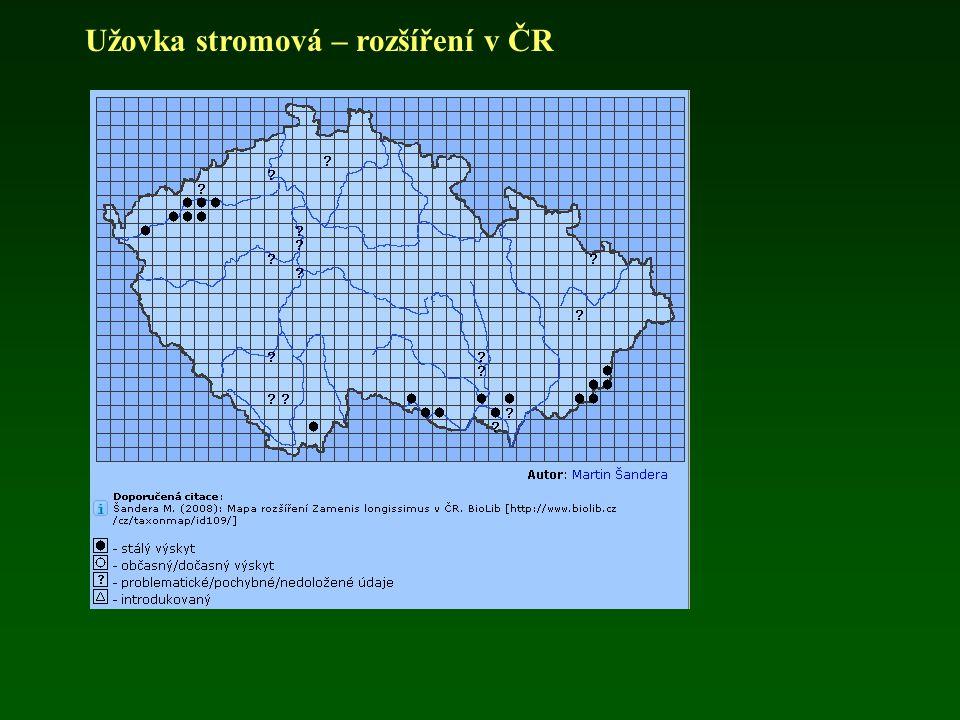 Užovka stromová – rozšíření v ČR