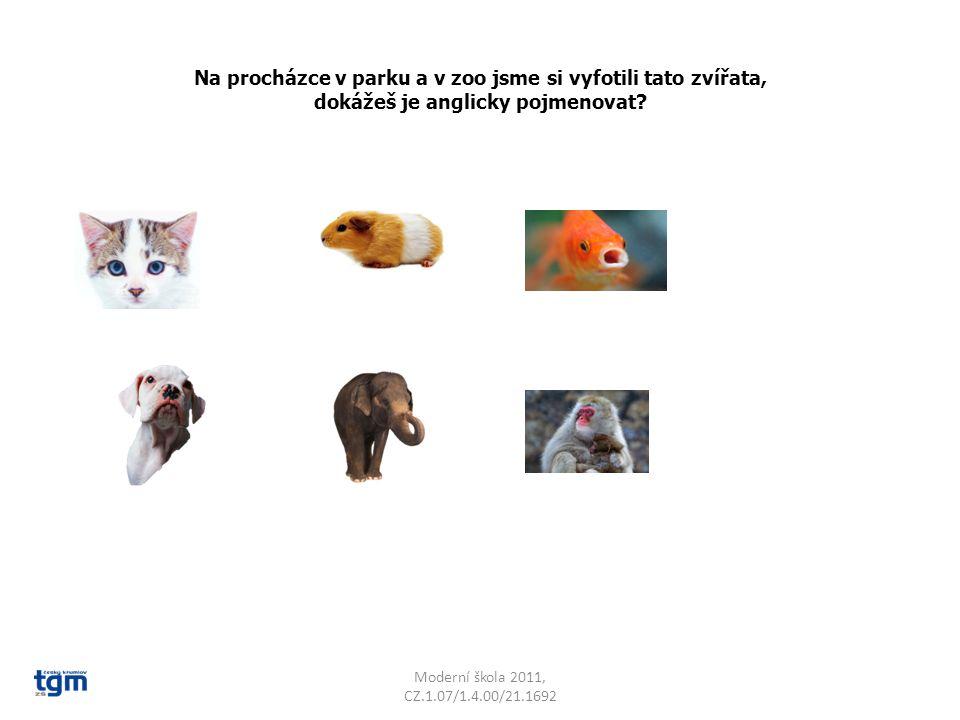 Na procházce v parku a v zoo jsme si vyfotili tato zvířata, dokážeš je anglicky pojmenovat? Moderní škola 2011, CZ.1.07/1.4.00/21.1692