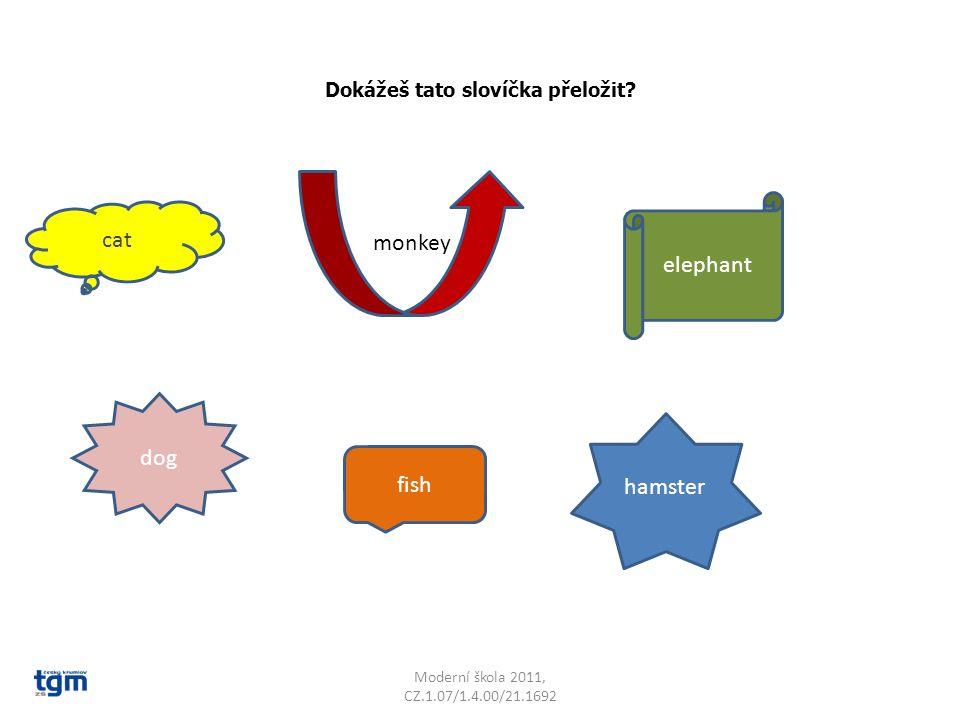 Dokážeš tato slovíčka přeložit? Moderní škola 2011, CZ.1.07/1.4.00/21.1692 cat hamster dog elephant fish monkey