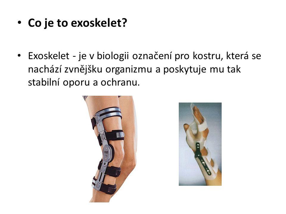 Co je to exoskelet? Exoskelet - je v biologii označení pro kostru, která se nachází zvnějšku organizmu a poskytuje mu tak stabilní oporu a ochranu.