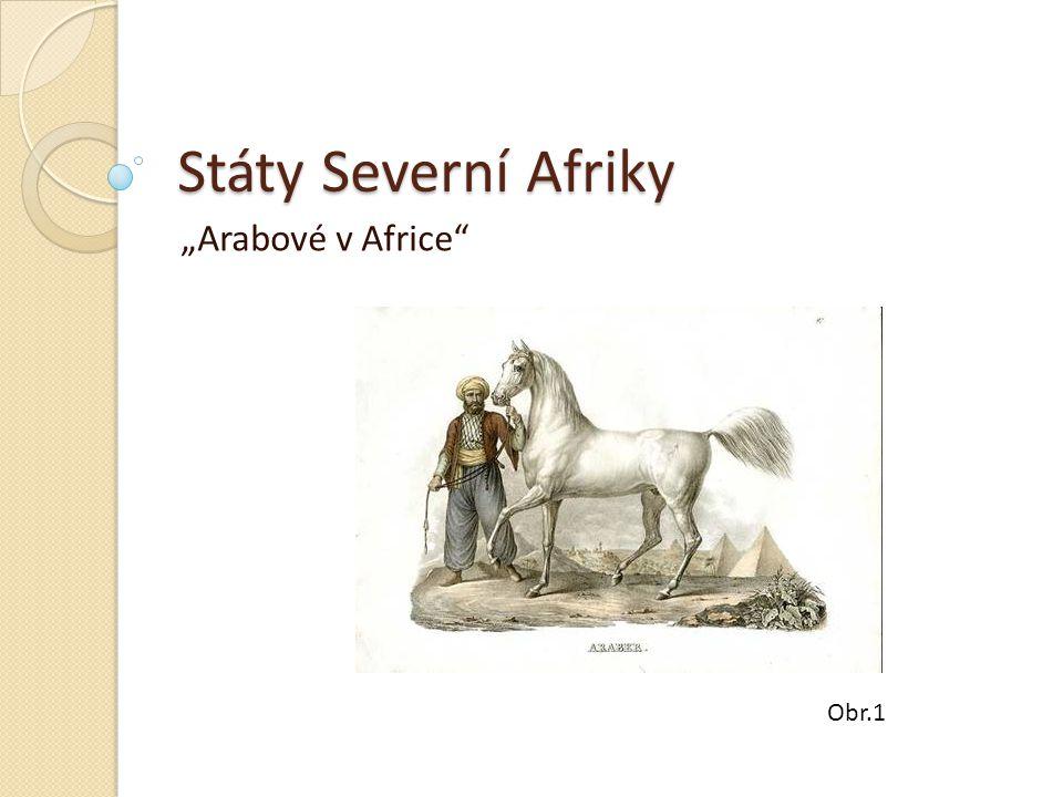 """Státy Severní Afriky """"Arabové v Africe"""" Obr.1"""