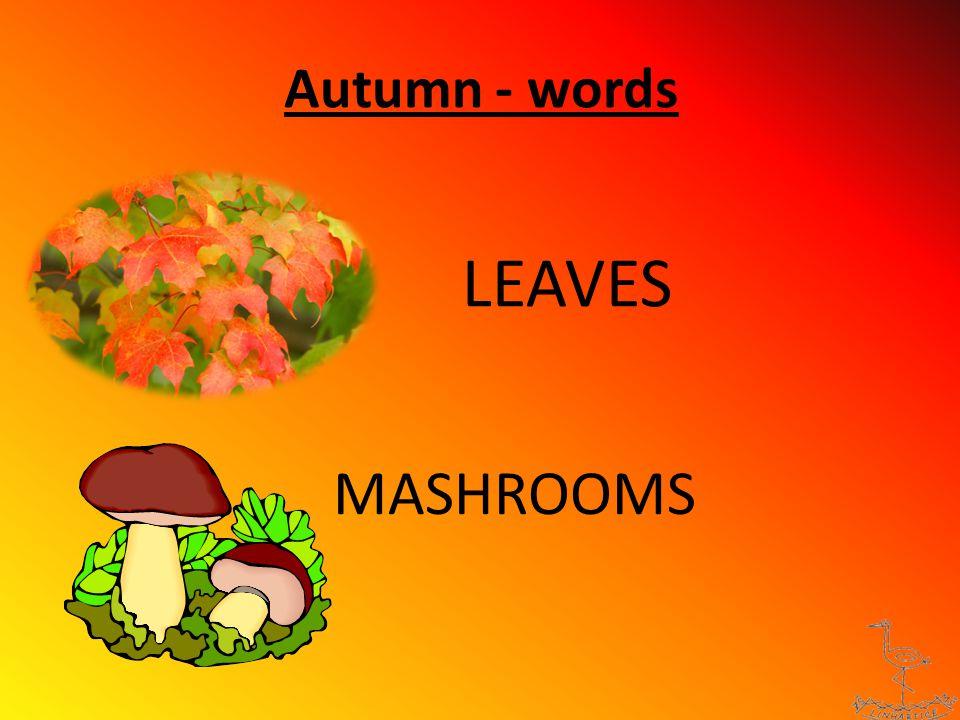 Autumn - words APPLES GRAPES BIRDS