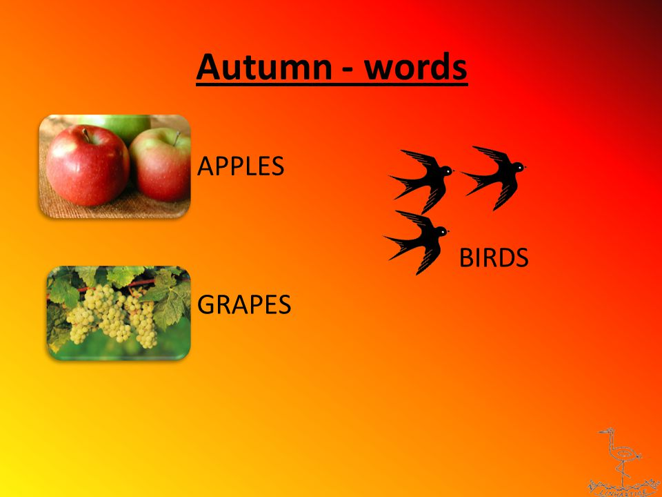 Autumn - words APPLES GRAPES BIRDS