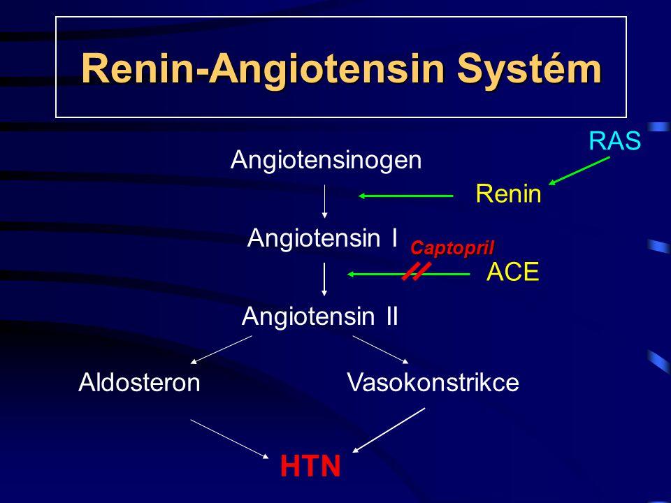 Renin-Angiotensin Systém RAS Captopril Angiotensinogen Angiotensin I Angiotensin II AldosteronVasokonstrikce HTN Renin ACE