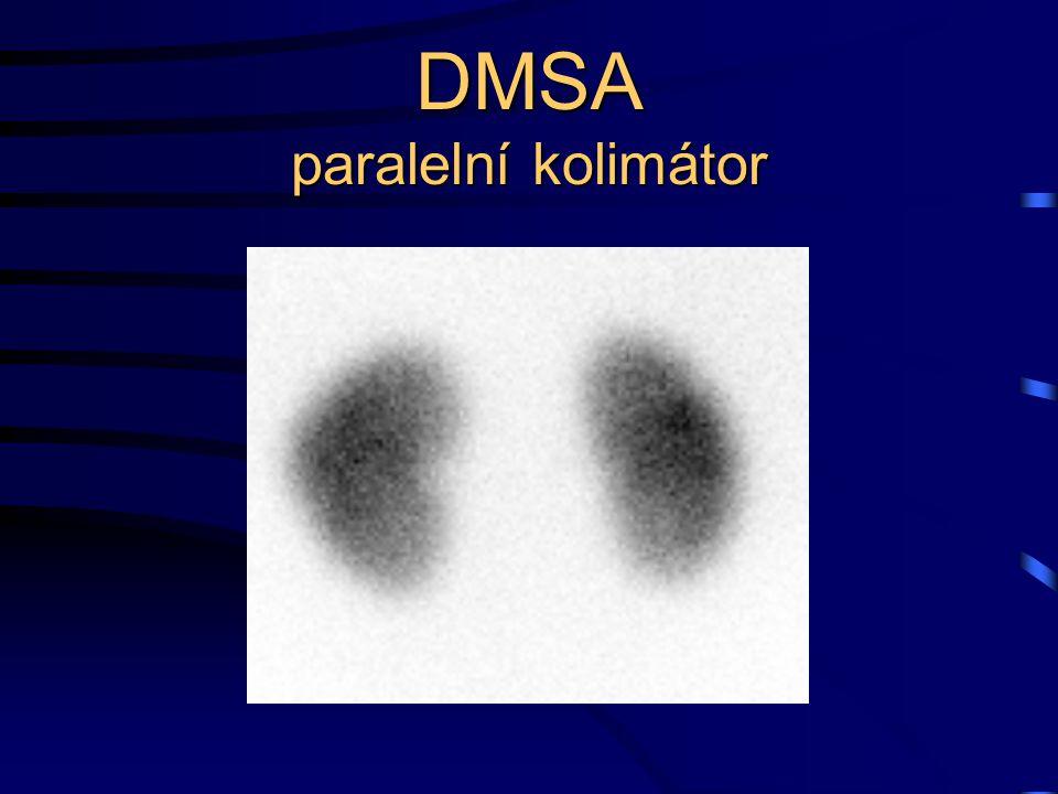 DMSA paralelní kolimátor