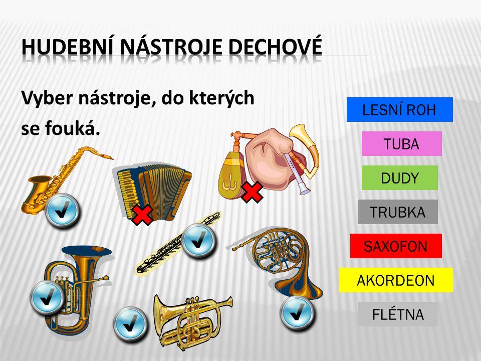 Vyber nástroje, do kterých se fouká. 10 FLÉTNA TRUBKA SAXOFON AKORDEON DUDY TUBA LESNÍ ROH