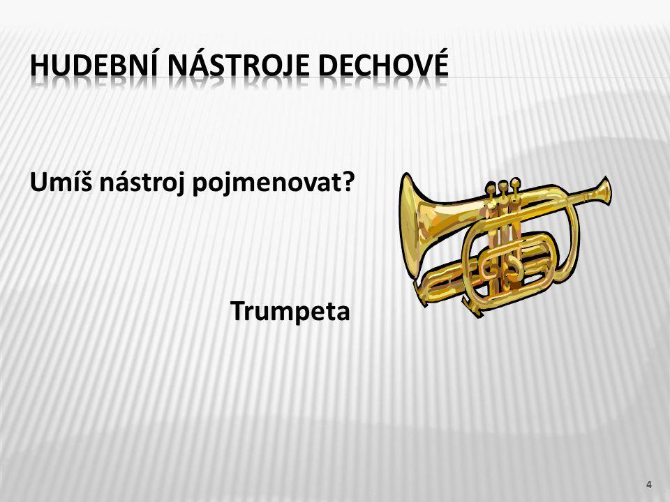 Umíš nástroj pojmenovat? Trumpeta 4