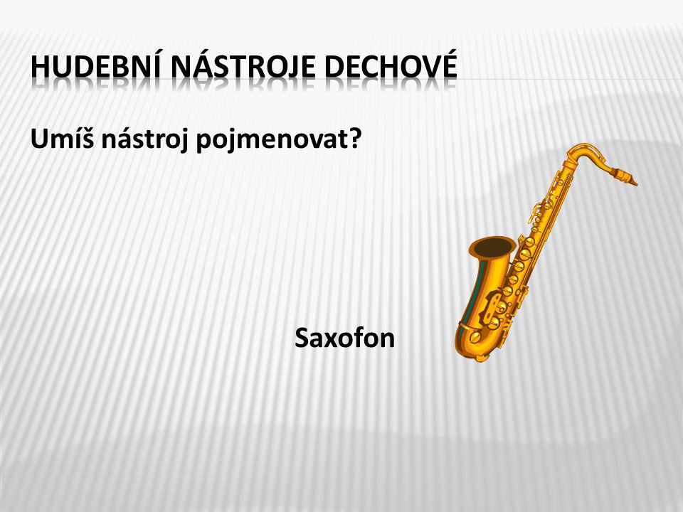 Umíš nástroj pojmenovat? 5 Saxofon