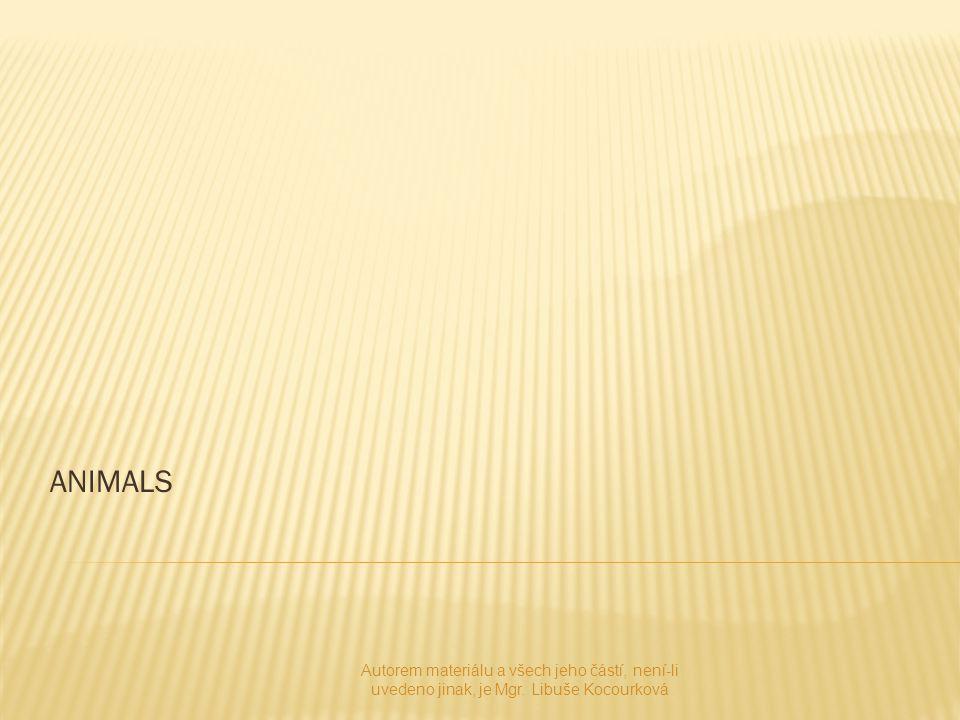 ANIMALS Autorem materiálu a všech jeho částí, není-li uvedeno jinak, je Mgr. Libuše Kocourková
