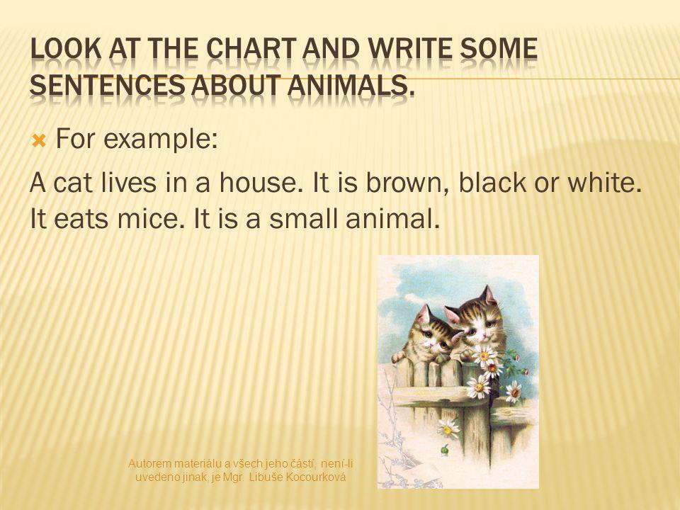  1) It is a small animal.It is white. It eats meat.
