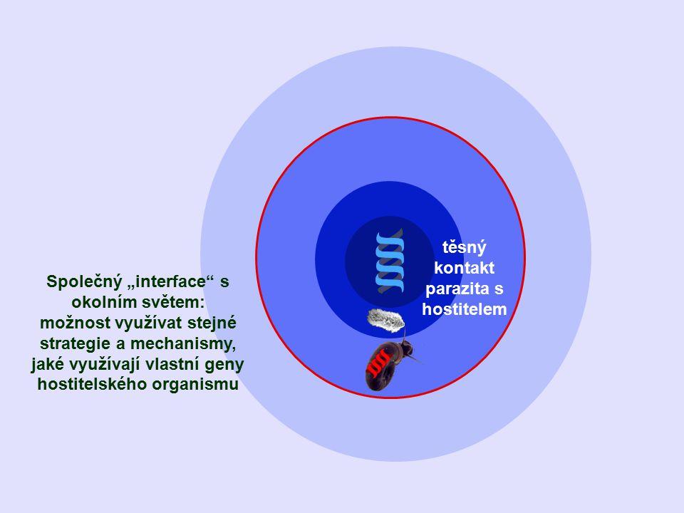 """Společný """"interface s okolním světem: možnost využívat stejné strategie a mechanismy, jaké využívají vlastní geny hostitelského organismu těsný kontakt parazita s hostitelem"""