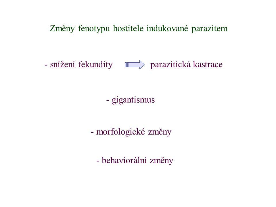 Změny fenotypu hostitele indukované parazitem - gigantismus - morfologické změny - behaviorální změny - snížení fekundity parazitická kastrace