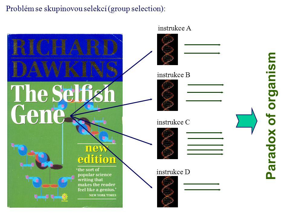 instrukce A instrukce D instrukce C instrukce B Problém se skupinovou selekcí (group selection): Paradox of organism
