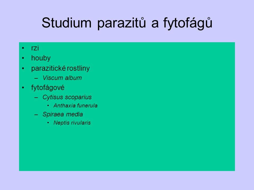 Studium parazitů a fytofágů rzi houby parazitické rostliny –Viscum album fytofágové –Cytisus scoparius Anthaxia funerula –Spiraea media Neptis rivular