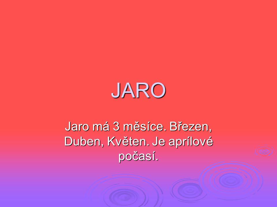 JARO Jaro má 3 měsíce. Březen, Duben, Květen. Je aprílové počasí.