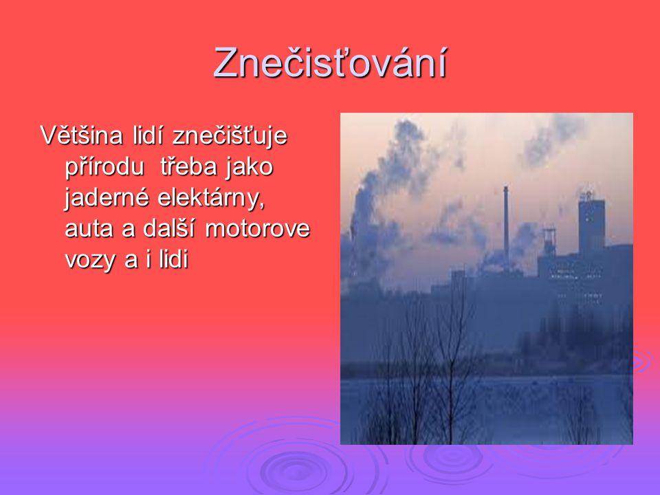 Znečisťování Většina lidí znečišťuje přírodu třeba jako jaderné elektárny, auta a další motorove vozy a i lidi