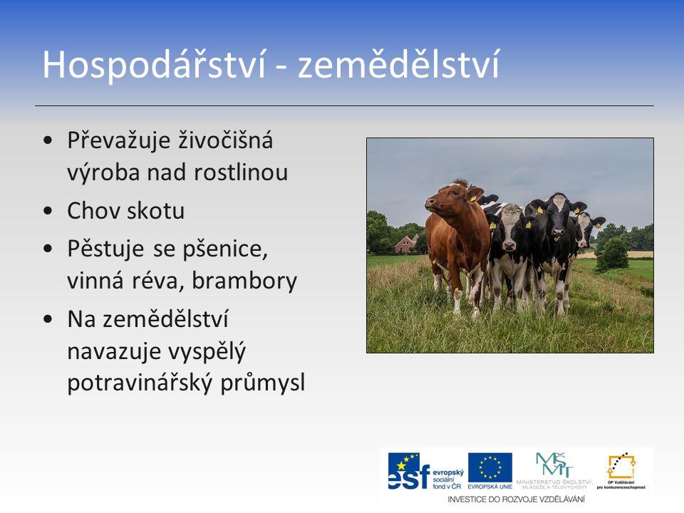 Hospodářství - zemědělství Převažuje živočišná výroba nad rostlinou Chov skotu Pěstuje se pšenice, vinná réva, brambory Na zemědělství navazuje vyspělý potravinářský průmysl