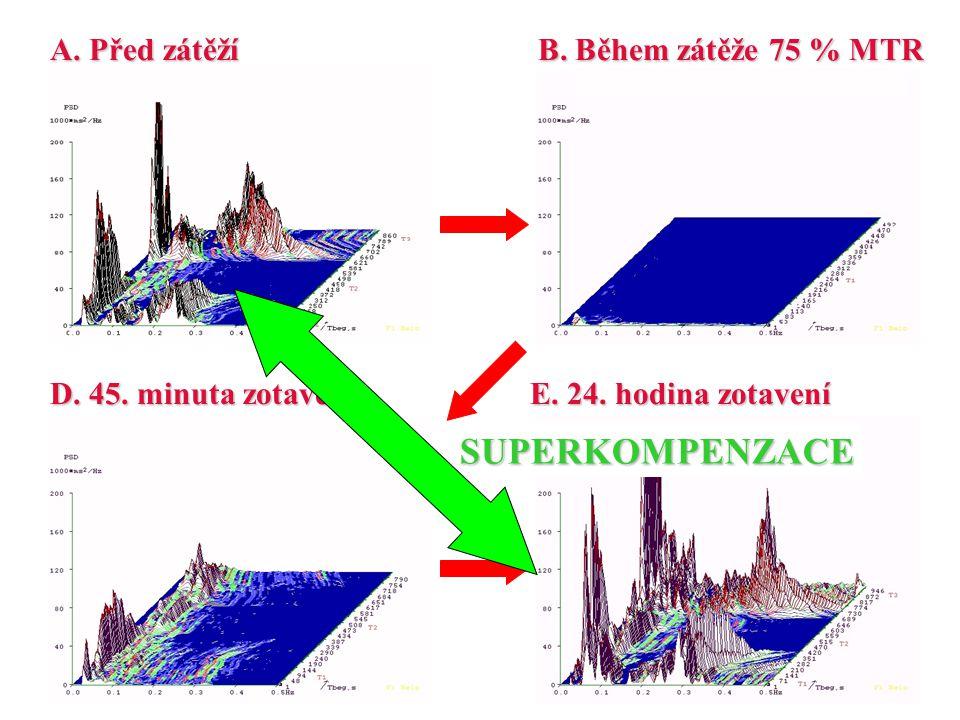 A. Před zátěží D. 45. minuta zotavení B. Během zátěže 75 % MTR E. 24. hodina zotavení SUPERKOMPENZACE