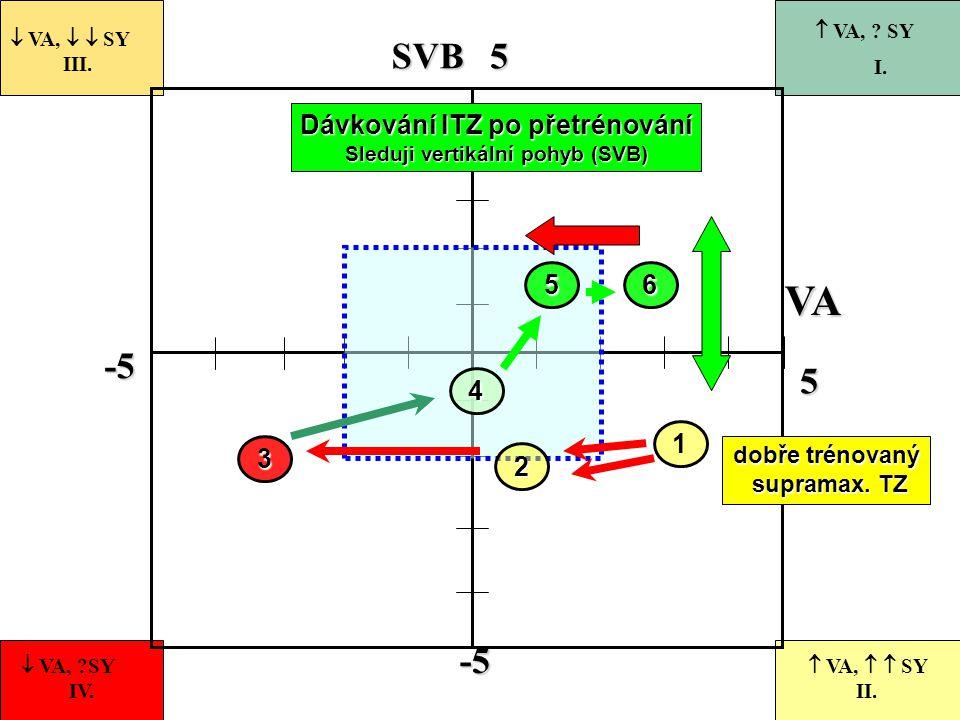 -5 55-5 VASVB 1  VA,   SY III.  VA, ?SY IV.  VA,   SY II.  VA, ? SY I. dobře trénovaný supramax. TZ supramax. TZ 2 Dávkování ITZ po přetrénová