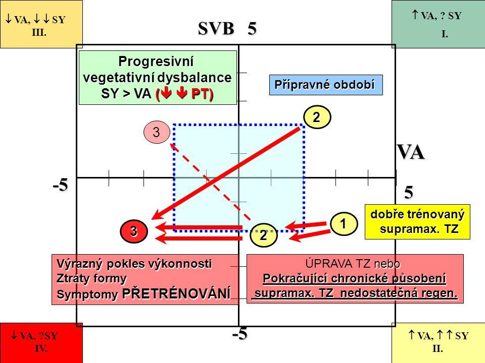 -5 55-5 VASVB 1  VA,   SY III.  VA, ?SY IV.  VA,   SY II.  VA, ? SY I. dobře trénovaný supramax. TZ supramax. TZ 2 Přípravné období Progresivn