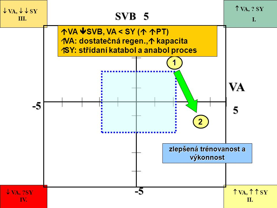 -5 55-5 VASVB 2  VA,   SY III.  VA, ?SY IV.  VA,   SY II.  VA, ? SY I. 1 zlepšená trénovanost a výkonnost  VA  SVB, VA < SY (   PT)  VA: