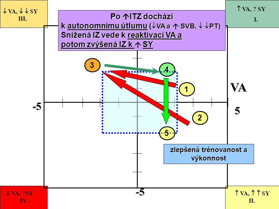-5 55-5 VASVB 2  VA,   SY III.  VA, ?SY IV.  VA,   SY II.  VA, ? SY I. 1 zlepšená trénovanost a výkonnost Po  ITZ dochází k autonomnímu útlum