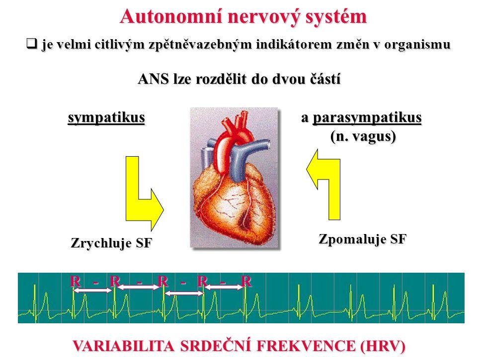 Autonomní nervový systém  je velmi citlivým zpětněvazebným indikátorem změn v organismu ANS lze rozdělit do dvou částí ANS lze rozdělit do dvou částí