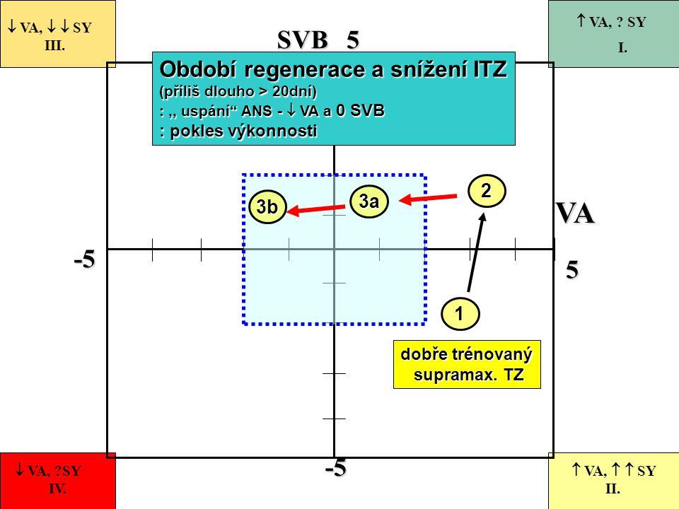 -5 55-5 VASVB 1  VA,   SY III.  VA, ?SY IV.  VA,   SY II.  VA, ? SY I. dobře trénovaný supramax. TZ supramax. TZ 2 Období regenerace a snížení