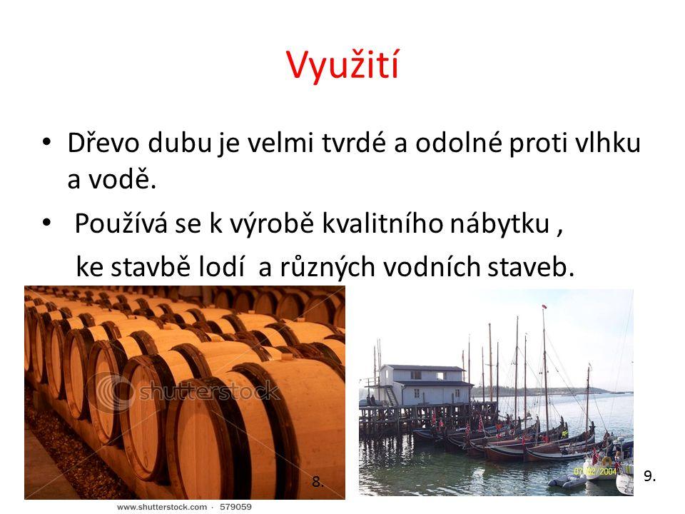 Využití Dřevo dubu je velmi tvrdé a odolné proti vlhku a vodě. Používá se k výrobě kvalitního nábytku, ke stavbě lodí a různých vodních staveb. 8. 9.