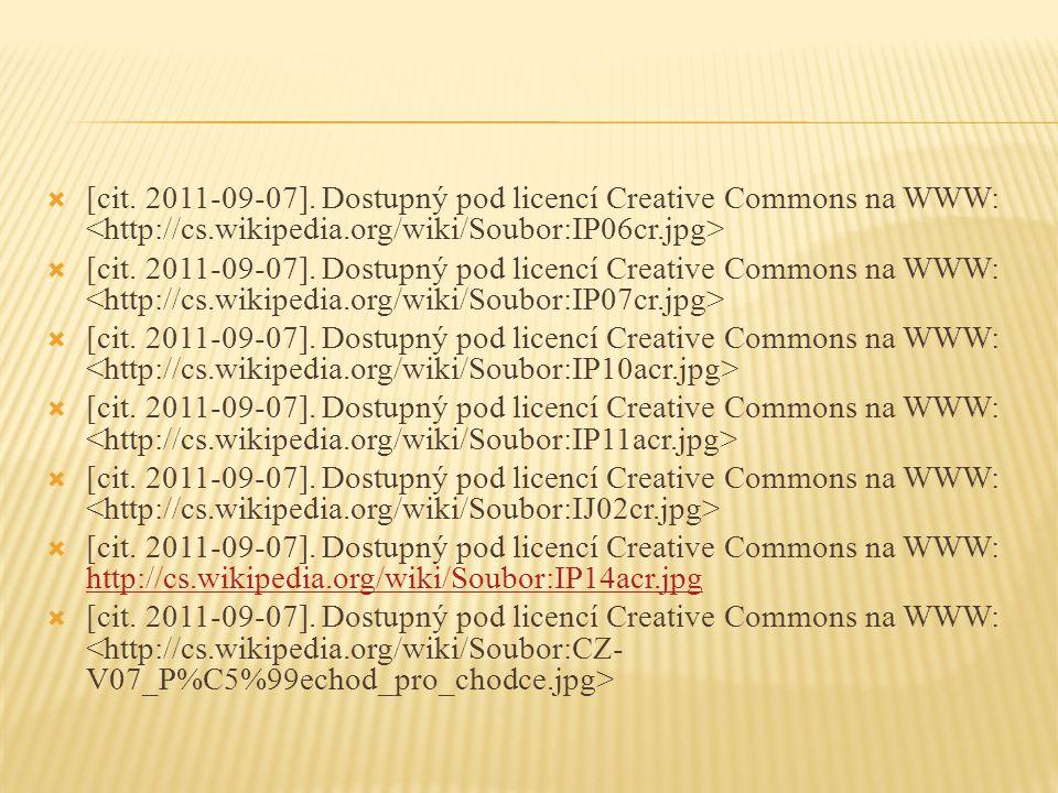  [cit. 2011-09-07].