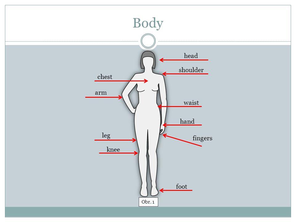 Body Excercise head chest shoulder arm waist hand fingers leg knee foot Obr. 2