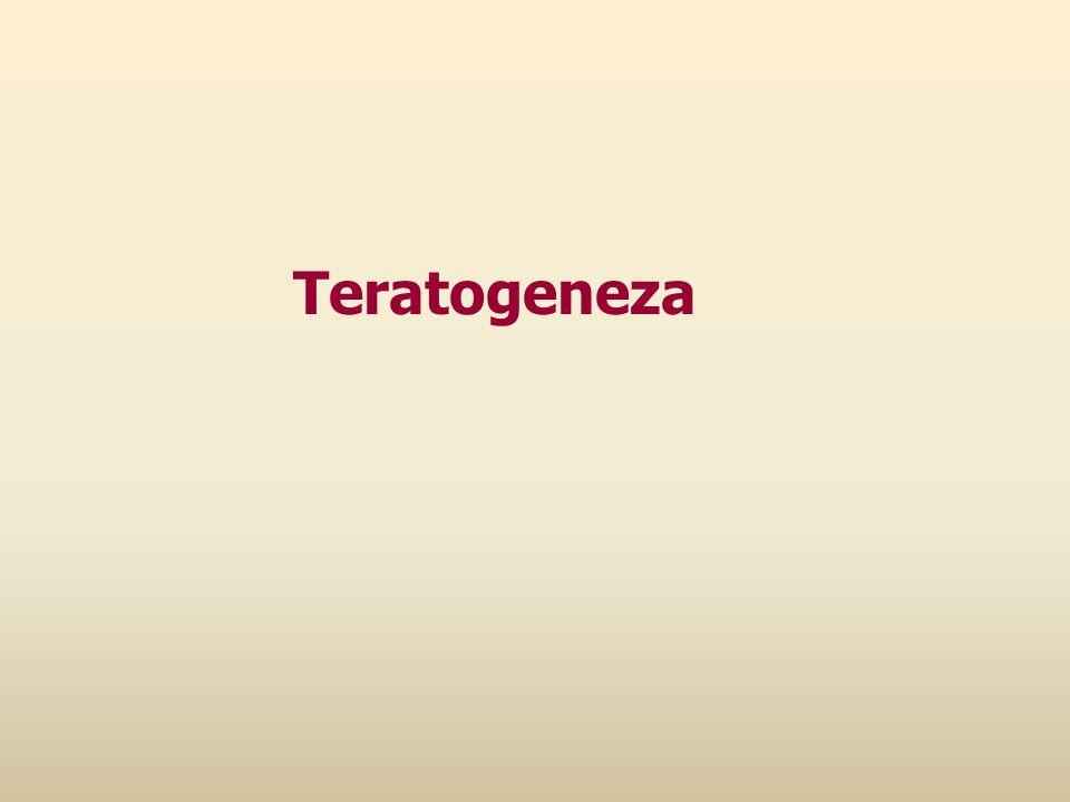 Teratogeneza