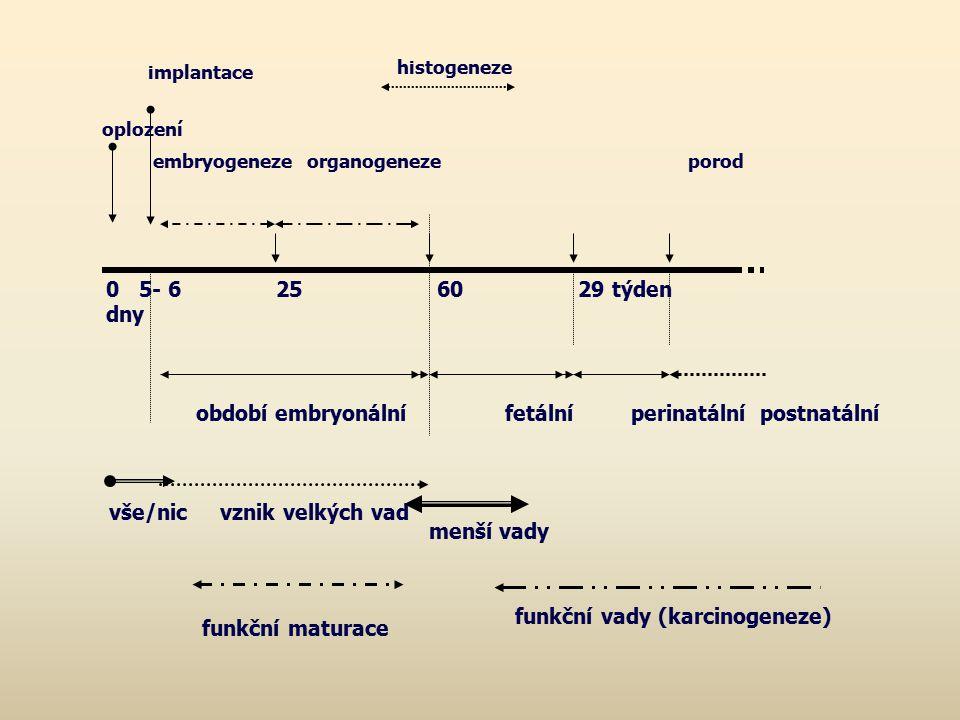 funkční maturace implantace histogeneze oplození embryogeneze organogeneze porod 0 5- 6 25 60 29 týden dny období embryonální fetální perinatální post