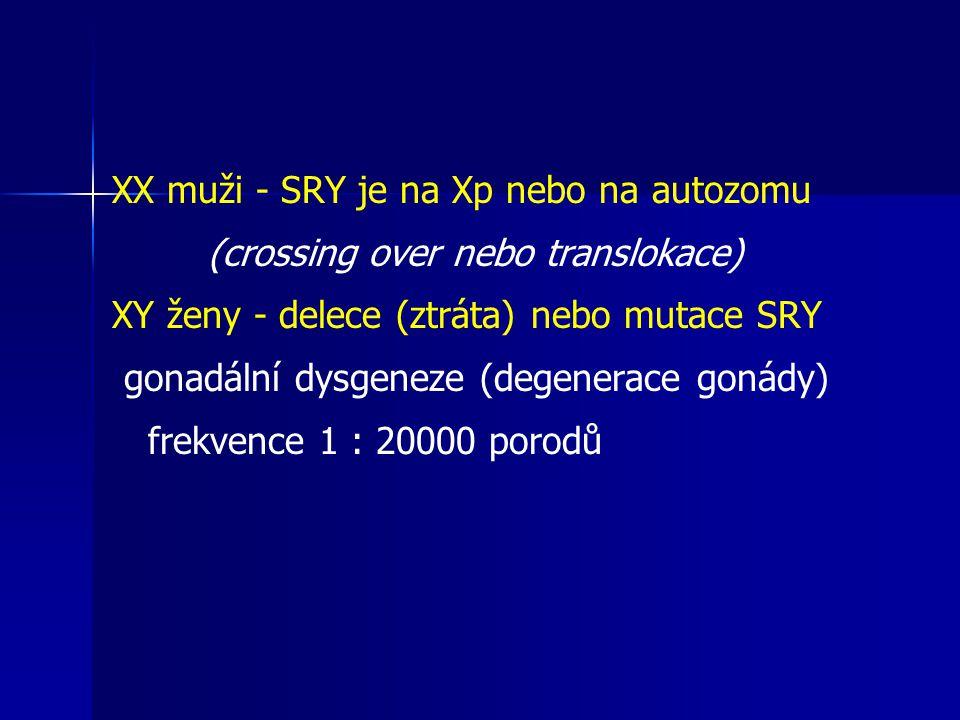 XX muži - SRY je na Xp nebo na autozomu (crossing over nebo translokace) XY ženy - delece (ztráta) nebo mutace SRY gonadální dysgeneze (degenerace gonády) frekvence 1 : 20000 porodů