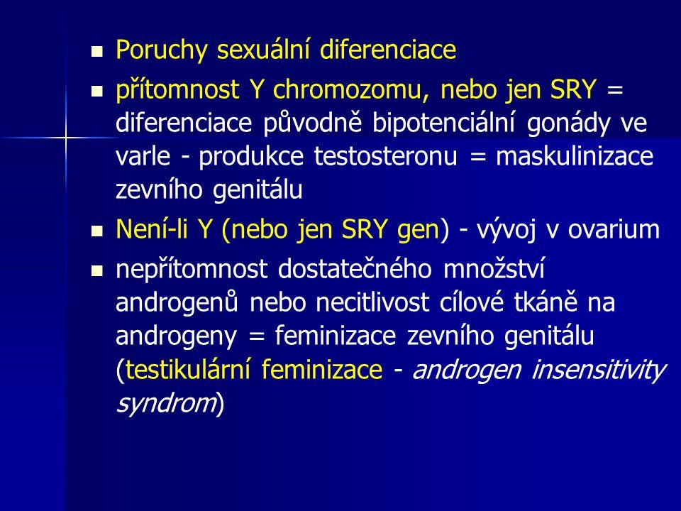 Poruchy sexuální diferenciace přítomnost Y chromozomu, nebo jen SRY = diferenciace původně bipotenciální gonády ve varle - produkce testosteronu = maskulinizace zevního genitálu Není-li Y (nebo jen SRY gen) - vývoj v ovarium nepřítomnost dostatečného množství androgenů nebo necitlivost cílové tkáně na androgeny = feminizace zevního genitálu (testikulární feminizace - androgen insensitivity syndrom)