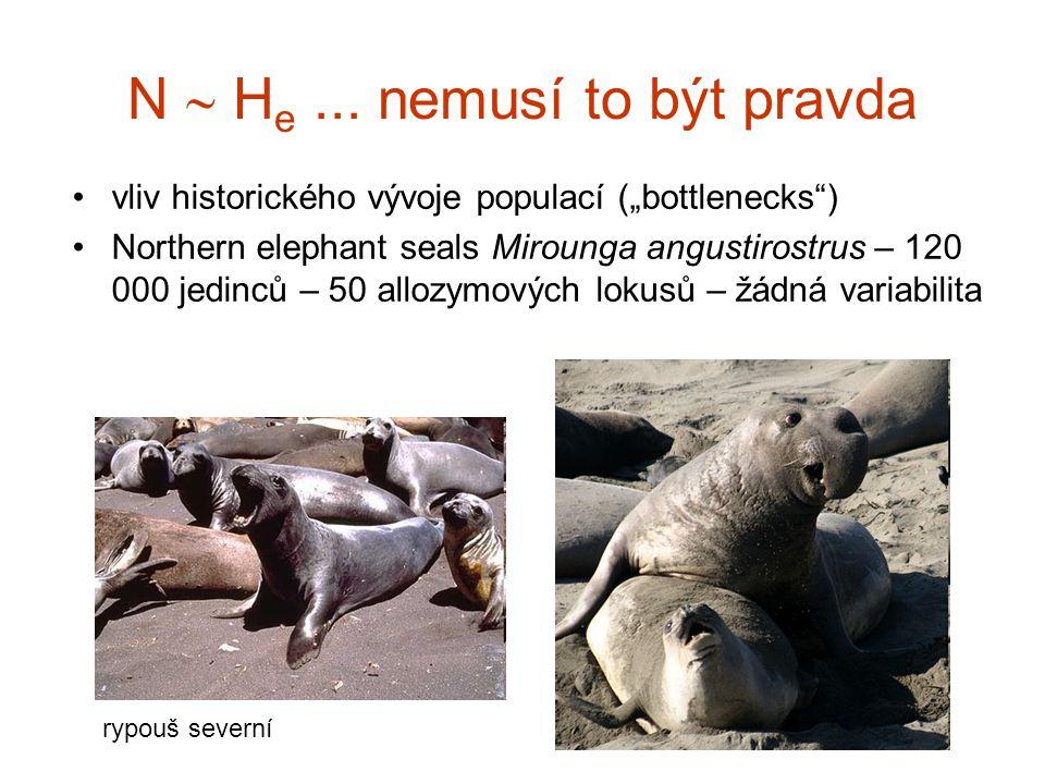 """N  H e... nemusí to být pravda vliv historického vývoje populací (""""bottlenecks"""") Northern elephant seals Mirounga angustirostrus – 120 000 jedinců –"""