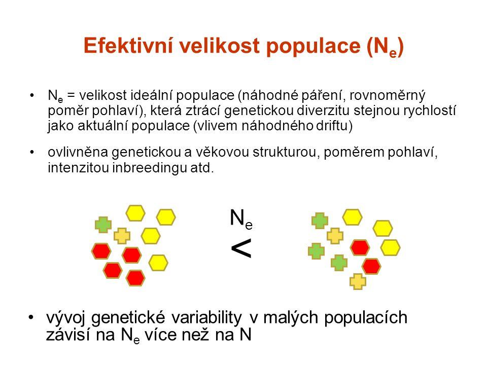 Efektivní velikost populace (N e ) N e = velikost ideální populace (náhodné páření, rovnoměrný poměr pohlaví), která ztrácí genetickou diverzitu stejn