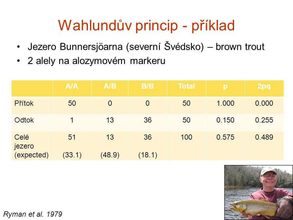 Wahlundův princip - příklad Jezero Bunnersjöarna (severní Švédsko) – brown trout 2 alely na alozymovém markeru A/AA/BB/BTotalp2pq Přítok5000 1.0000.00
