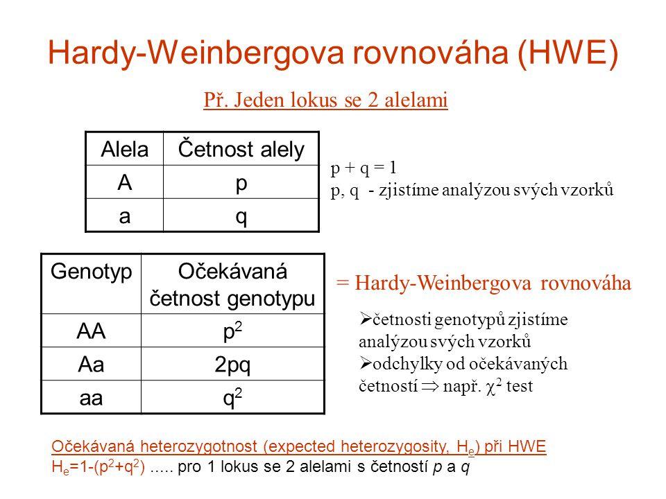 """Předpoklady HWE náhodné párování (panmixia) zanedbatelný efekt mutací a migrací (""""closed populations ) nekonečně velká populace Mendelovská dědičnost použitých markerů neutrální znaky – žádná selekce znaky nejsou ve vazbě – kontrola na """"linkage disequilibrium (vazebná nerovnováha) 2 lokusy ve fyzické blízkosti (snížená pravděpodobnost rekombinace linkage disequilibrium) vs."""