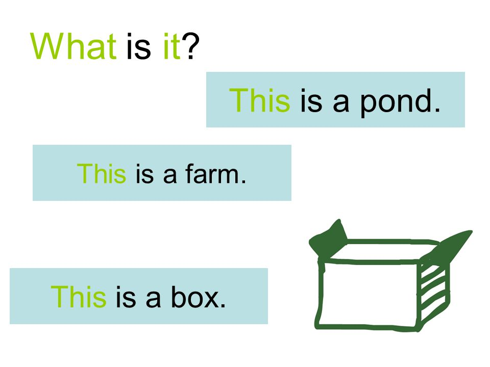What is it? This is a farm. This is a box. This is a pond.